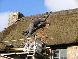 John reaches over to extract the thatch